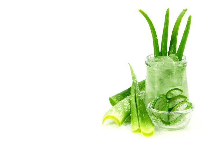 Aloe vera gel for nail fungus cream