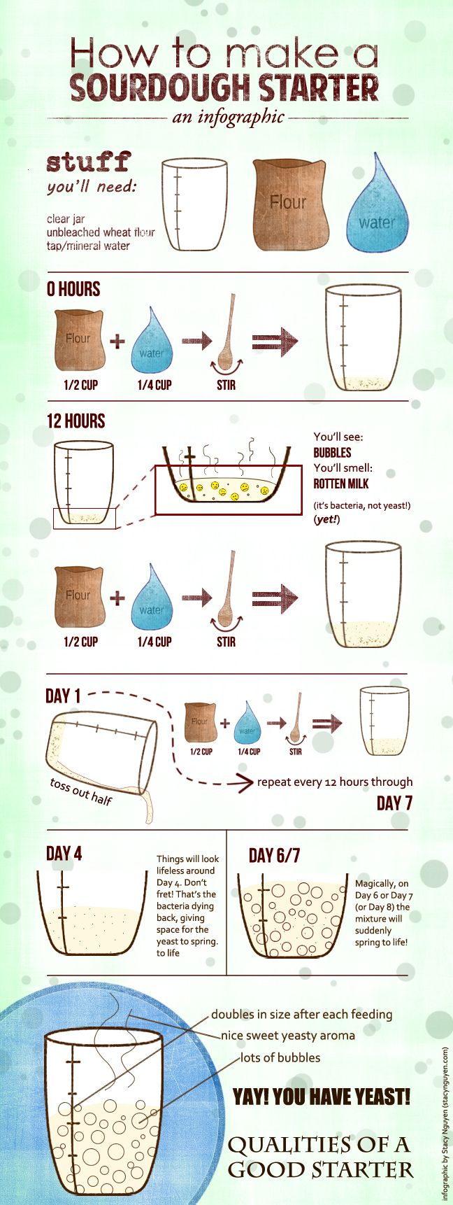 Recipe & Infographic: How to Make a Sourdough Yeast Starter and No-Knead Sourdough Boule - heoyeahyum.com