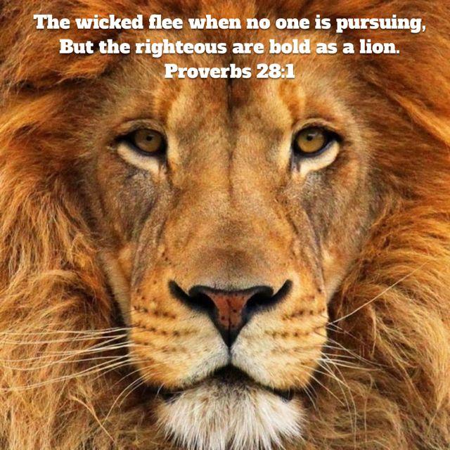 Proverbs 28:1
