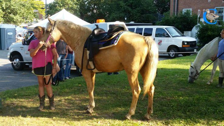 Caroline County Summerfest 2014