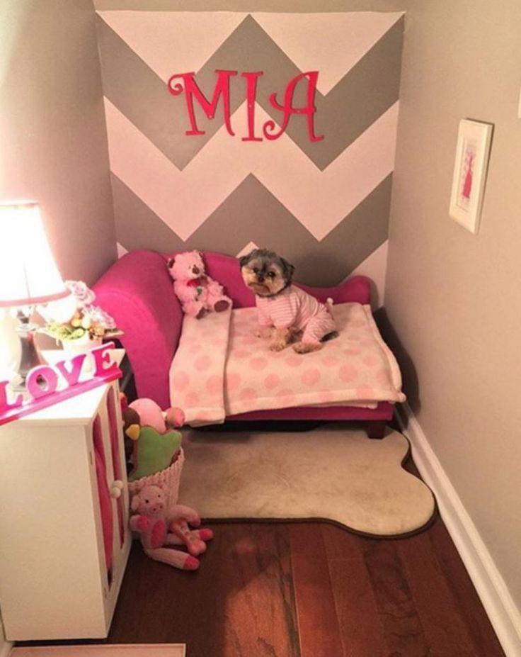 Una familia convierte un armario en un dormitorio con todo tipo de detalles para su perro: #perro #perros #shitzu #cachorro #cachorros #animales #animal #mascota #mascotas #noticias #noticia #schnauzi #dog #dogs