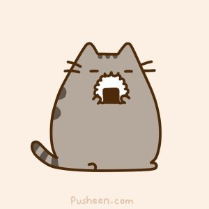 sushi cat gif - Google Search << excuse you sir that is a rice ball not sushi << lol