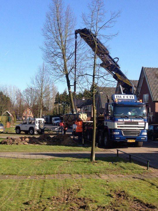 Fase 1 bomen weg uit de Zanderijweg