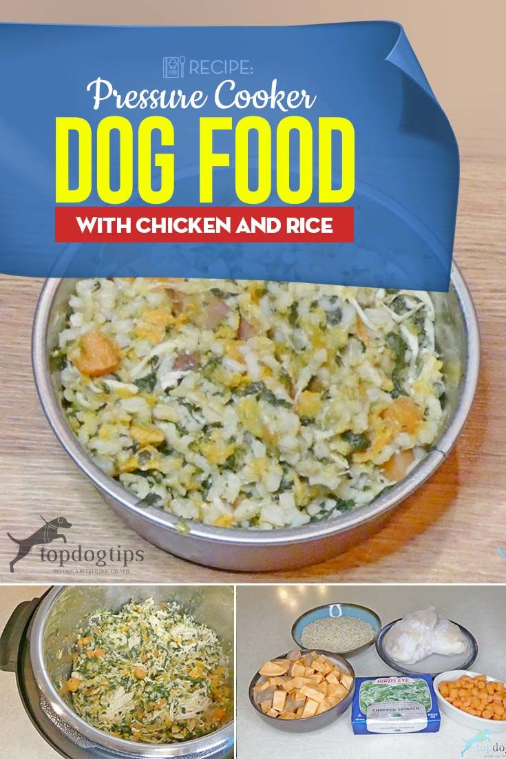 Recipe Pressure Cooker Dog Food With Chicken And Rice Dog Food
