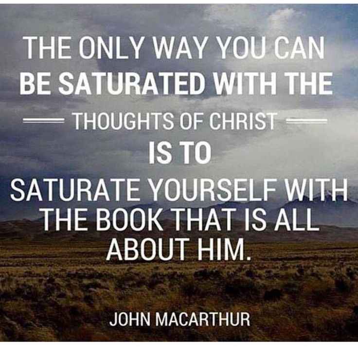 Saturate your life in scripture!!! | Reposts @theology.quotes #LadiesLoveTheology