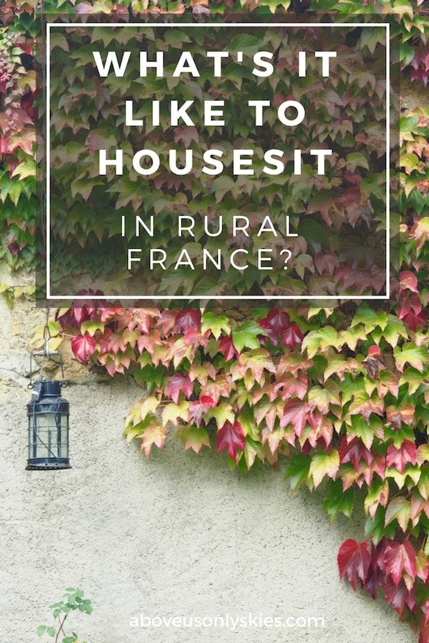 Everything you need to know about house sitting in the magnificent French countryside…