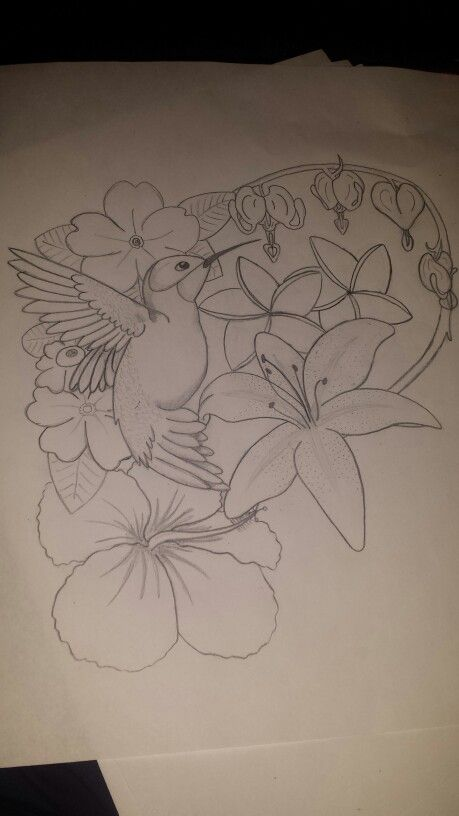 Hummingbird, primrose, plumeria, bleeding hearts, lily, hibiscus drawing I did. 2/23/15