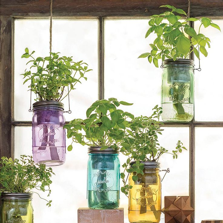 Best 25+ Mason Jar Herbs Ideas On Pinterest | Mason Jar Garden, Mason Jar Herb  Garden And Herb Garden Indoor