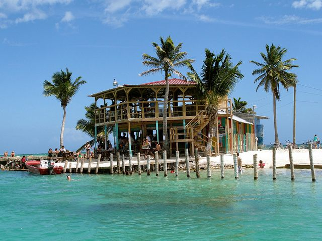 Lazy Lizard - Caye Caulker - Belize