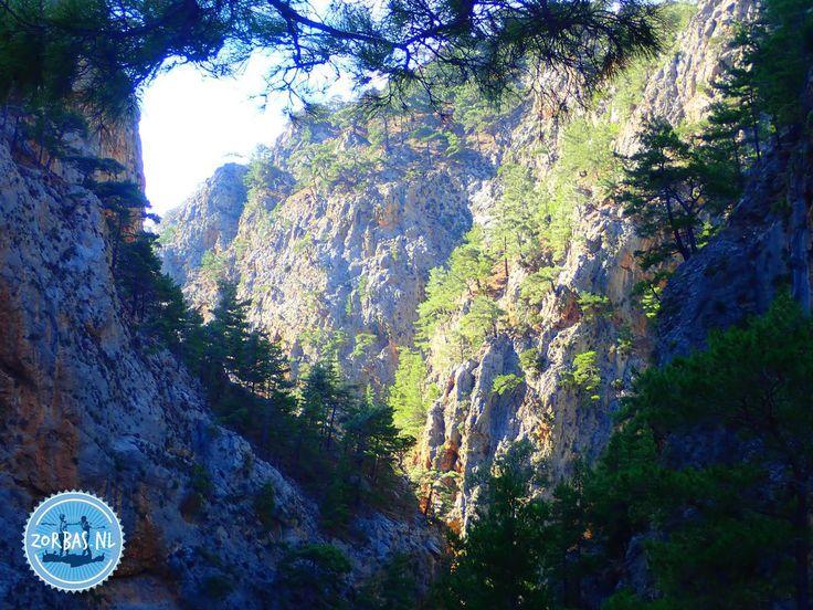 Wandern auf Kreta   Wandern auf Kreta Griechenland:Hier finden Sie Infos zum Wandern und zu ausgedehnten Spaziergängen auf Kreta. Unsere Unterkunft liegt direkt am Wasser und ist ein idealer Ausgangspunkt für Wanderungen auf Kreta im Sommer und Winter. Wir bieten sowohl individuelle als auch Gruppenwanderungen an. Die Samaria-Schlucht kennt wahrscheinlich eine große Mehrheit der Urlauber, aber