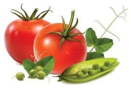 Resultado de imagen para frutas y verduras en foami