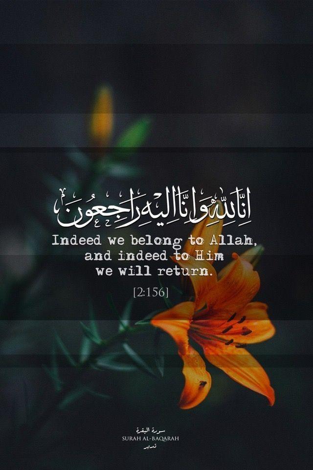 Surah Al Baqarah The Cow Quran 2 156 Islamic Inspirational Quotes Quran Quotes Quran Verses