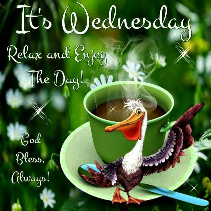 Its Wednesday Relax And Enjoy The Day good morning ...