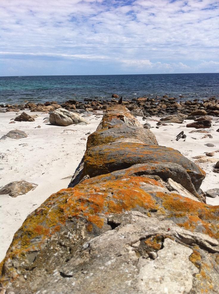 Lady Bay South Australia