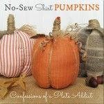 These super cute no-sew pumpkins are just too adorable and use the sleeve from a long-sleeved button down shirt. Great use of an old shirt or excuse to go thrift-store shopping!