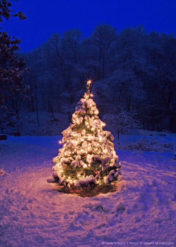 32 Best Snowy Christmas Images On Pinterest Winter
