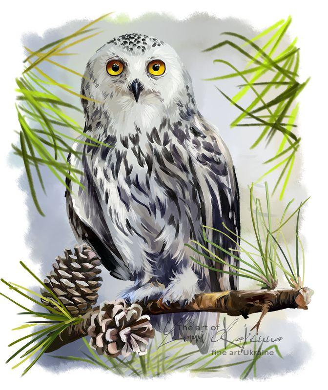 Snowy owl by Kajenna