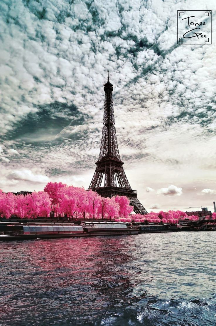 Paris, color infrared photography.