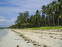 Kenya's beautiful bamburi beach