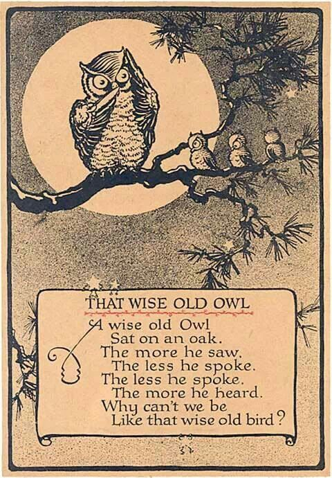 ❤️ A Wise Old Owl Sat On An Oak. the More He Saw, The Less He Spoke. The Less He Spoke, The More He Heard....Why Can't We Be Like That Wise Old Bird??? ~c.c.c~This was a favorite quote of my mothers....
