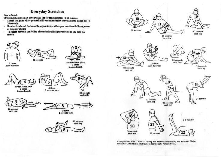 11 best kegel exercises images on pinterest | for men, pelvic, Skeleton