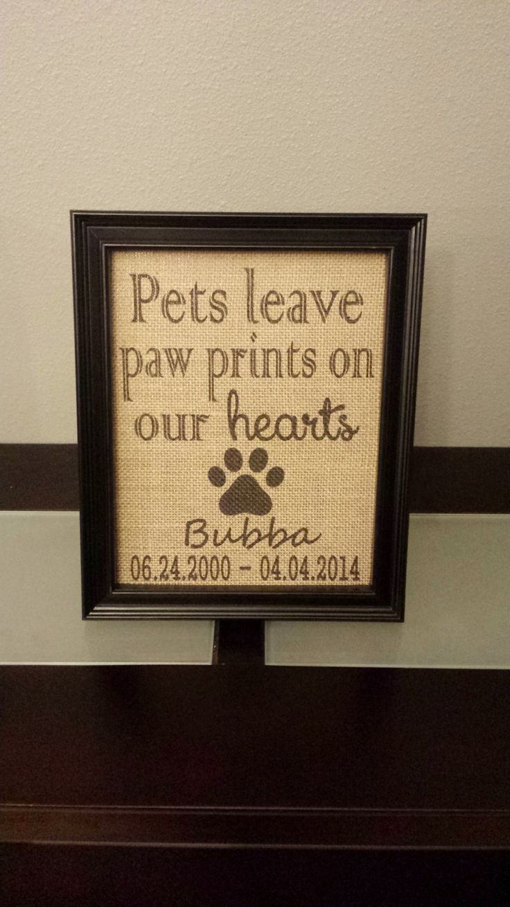 9 best Sunshine images on Pinterest | Frame, Frames and Pet memorials