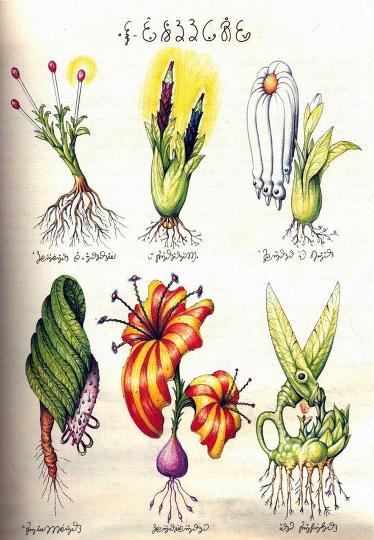 Notice the Scissor Plant? Luigi Serafini's masterpiece Codex Seraphinianus, or the Fantastical Encyclopedia. 1976-78