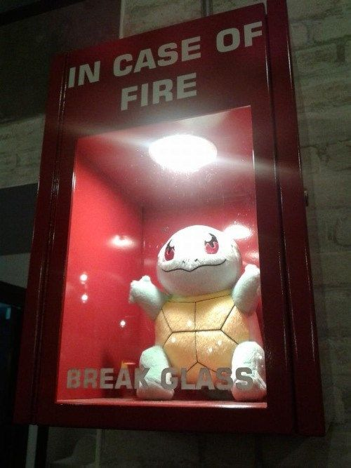 pokemon memes squirtle break glass