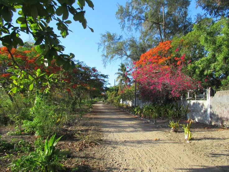 Avenida do Fortaleza runs from the Indian quarter to the main fort on Ibo Island, Mozambique.