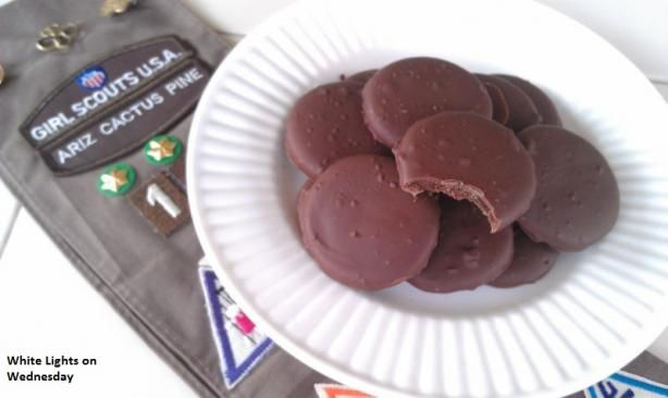 Girl Scout Thin Mint Cookies Made at Home!