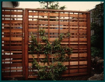 43 best images about fencing on pinterest fence design for Wood patio privacy screens