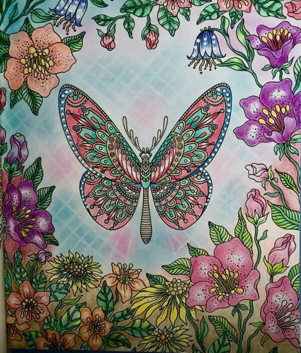 Coloring Tips Adult Books Butterfly Art Butterflies Colouring Techniques Daydream Johanna Basford Summer Nights
