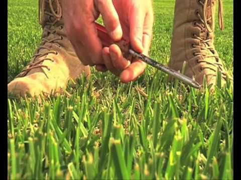 Nigel Ruck shows you how to treat soil compaction in your lawn!