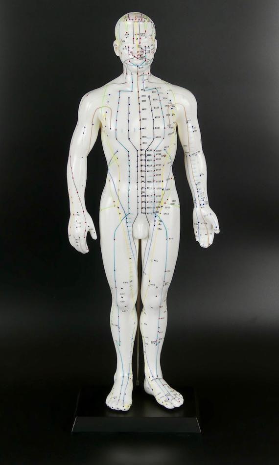 Mannequin Dacupuncture Homme Médecine Chinoise Etsy Acupuncture Acupuncture Chinoise Modèles Masculins