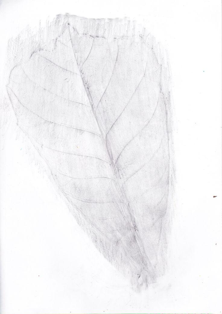 Imagen obtenida con el papel sobre una hoja.