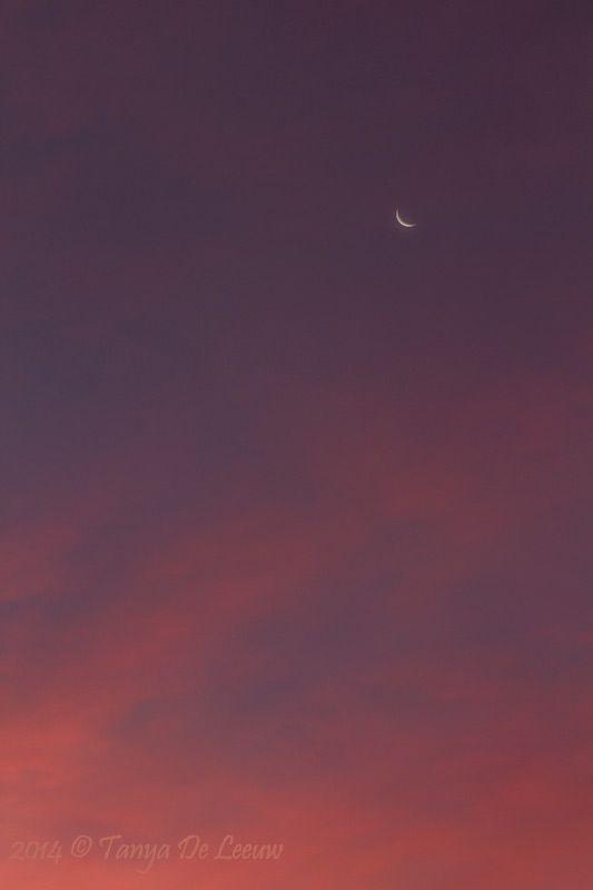 Sunrise chases moonset ... Oct 19 '14