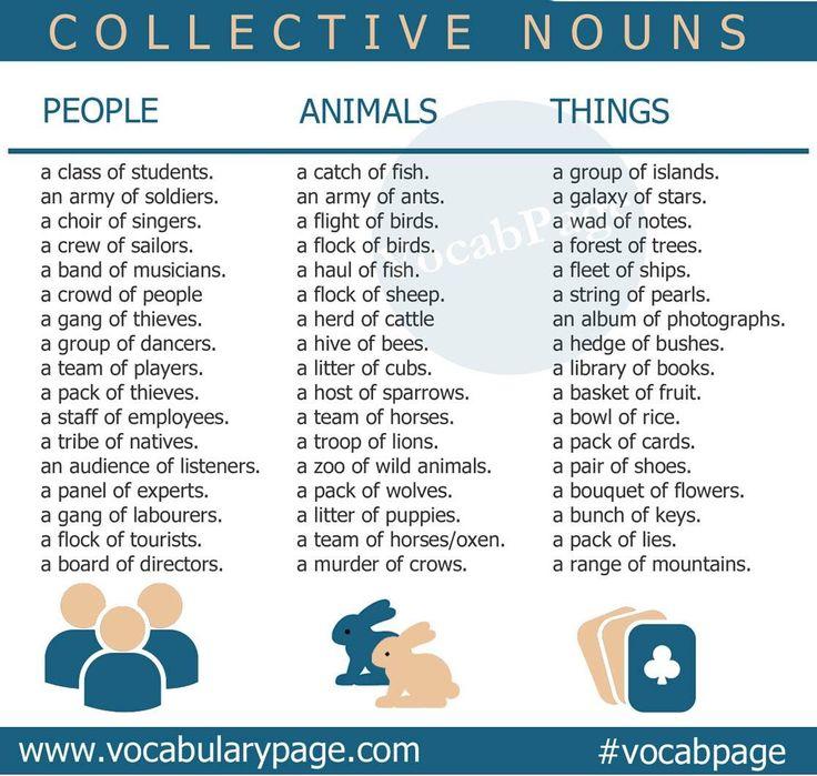 Collective nouns                                                       …