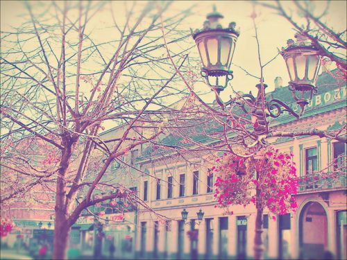 :): Pastel, Building, Color, Beautiful, Vintage Photography, Inspiration Pictures, The Cities, Flower, Disney Movie