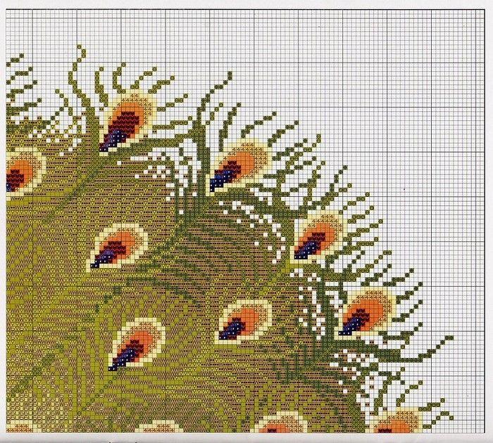 peacock waterfall 5/11
