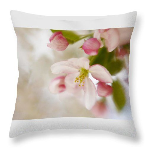Spring Throw Pillow featuring the photograph Spring Blossom Whisper by Diane Alexander