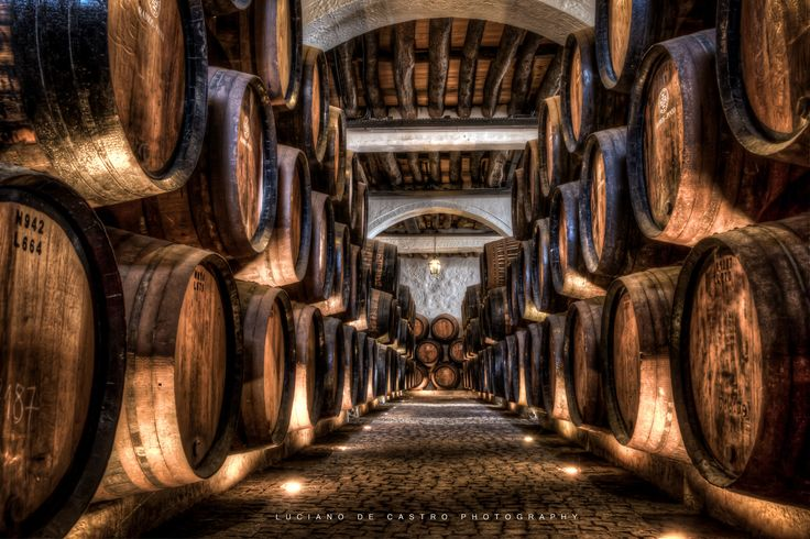 Need Something to Drink? - Wooden barrels room at the winery Cave Ramos Pinto in Porto, Portugal