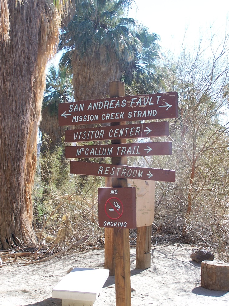 In the Palm Oasis, Thousand Palms, California where the ...
