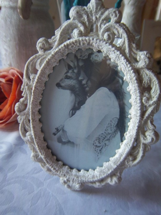 Plastic Vintage photo frame