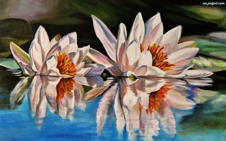 Znalezione obrazy dla zapytania lilie wodne obraz