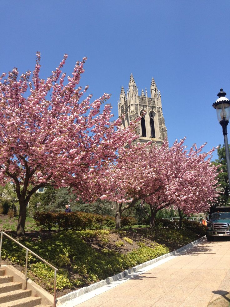 Saint Joseph's University in Philadelphia, PA