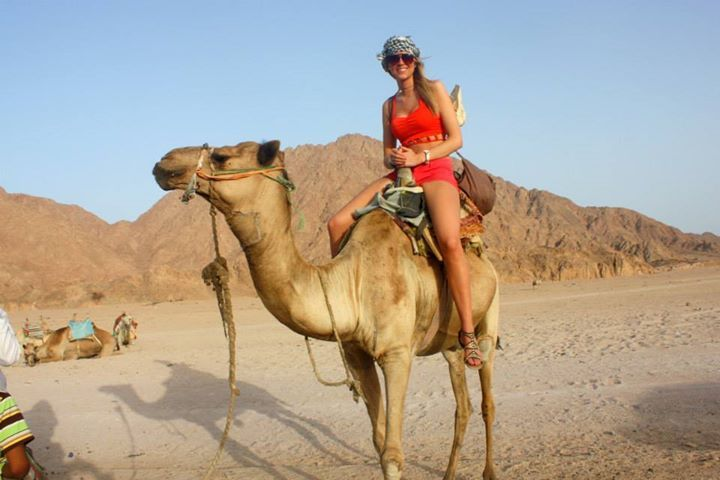 Egypt Desert Safari Photo Gallery | http://fromicetospice.com/photo-gallery-2/