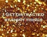 shiny!: Shiny Things, Life, Stuff, Quote, Funny, Truths, Sparkle, Glitter, True Stories
