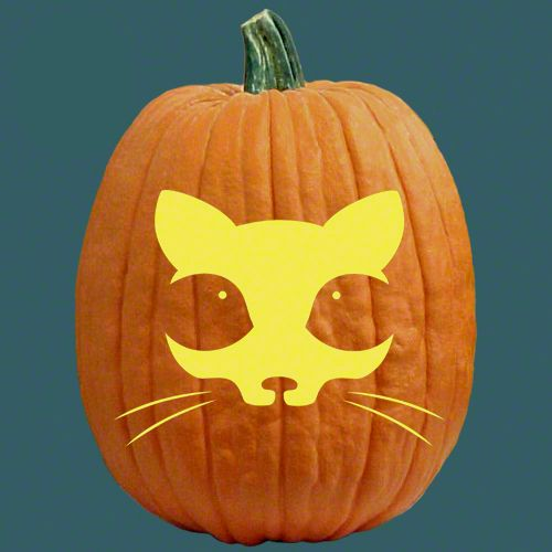 Best images about cats witches pumpkin carving