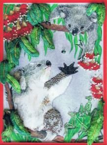 Kooee Koala by Catherine Howell