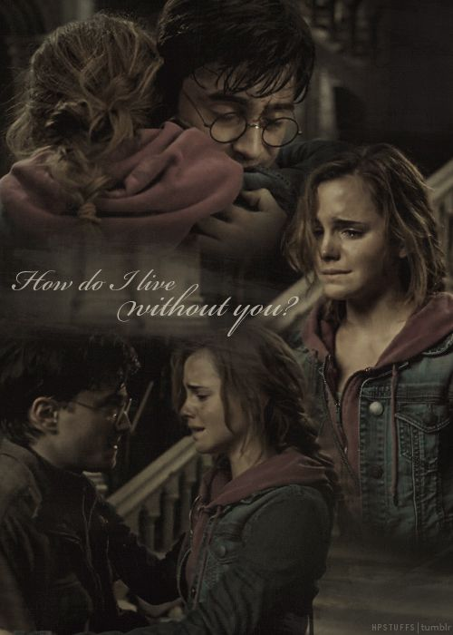 deathly hallows tale of the three brothers quotes relationship
